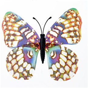 Colorful Magnetism Fluorescent Butterfly Shiny Butterfly Decoration - 10 pcs/set