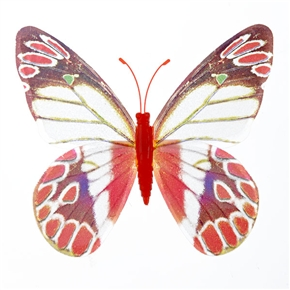 Simple Magnetism Butterfly Decoration Fluorescent Flying Butterfly - 10 pcs/set